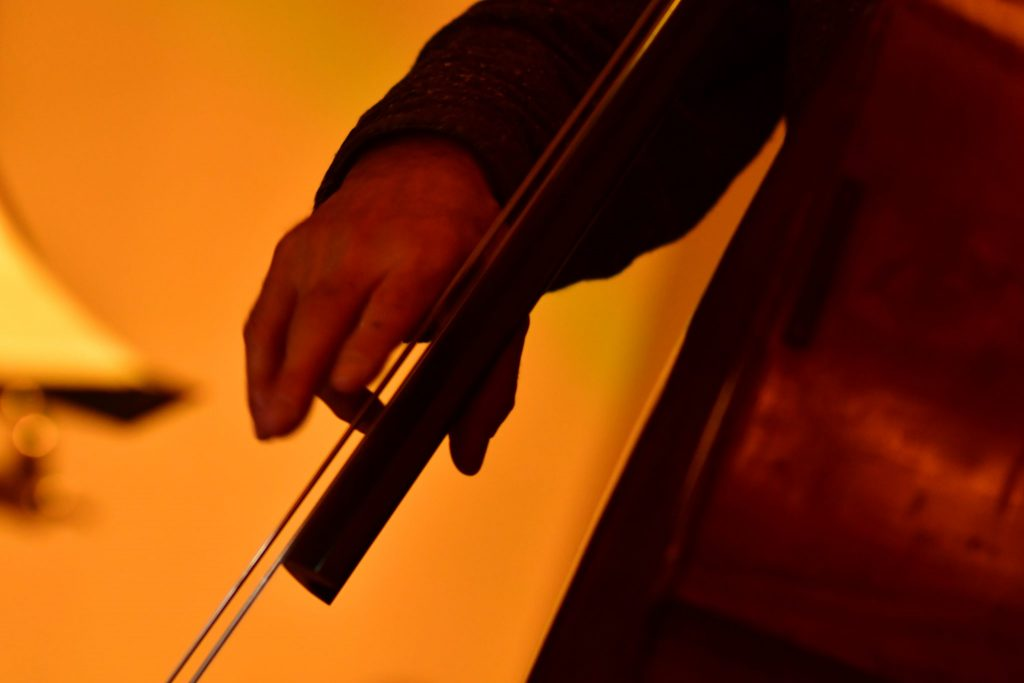 Strings and hands of a double bass player in a jazz gig