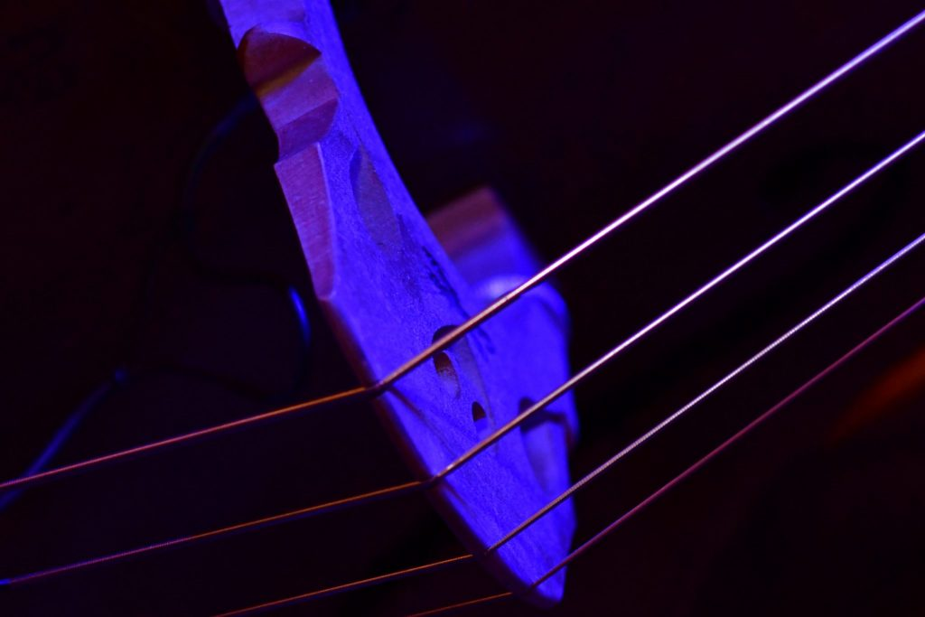 The Music of Nature with Strings Attached. The bridge of a double bass is usually made of a hard seasoned maple wood, illustrating yet another nature-society connection manifested in jazz music.